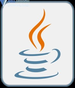 Java SE Runtime Environment (JRE) v11.0.2