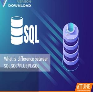 SQL DXP Premium v6.5.5.170